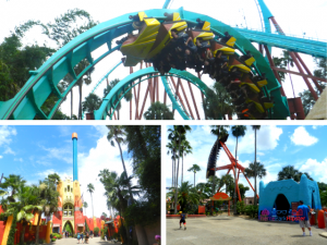 Busch Gardens Rides with colorful roller coasters.