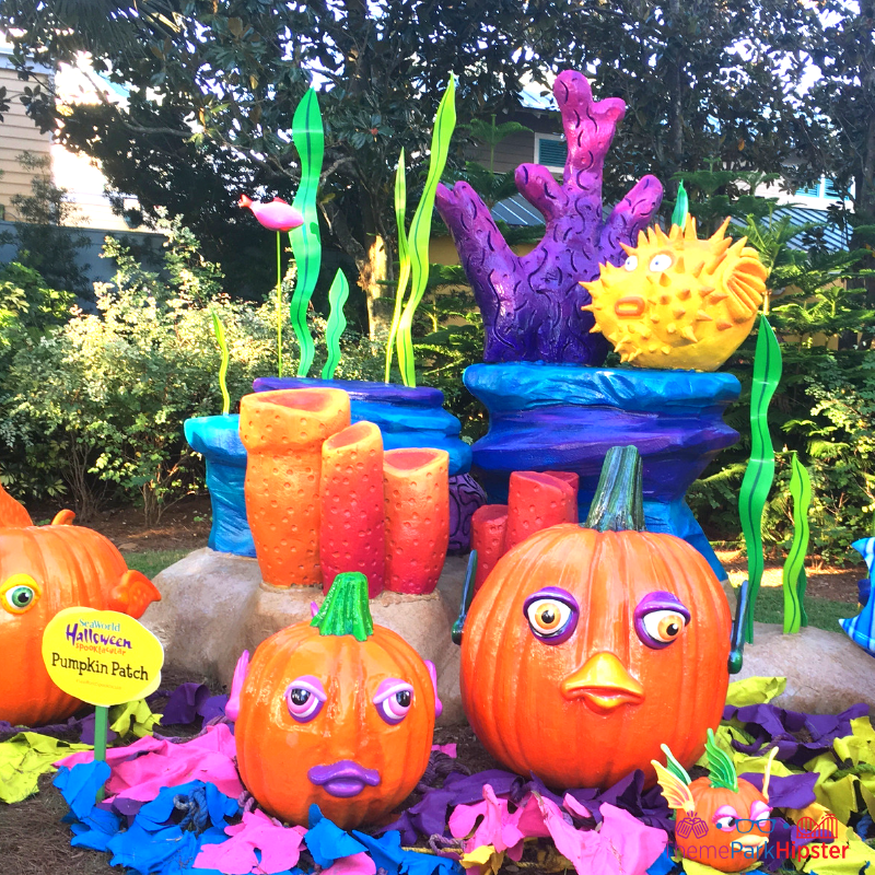 SeaWorld Spooktacular Halloween with colorful pumkin patch