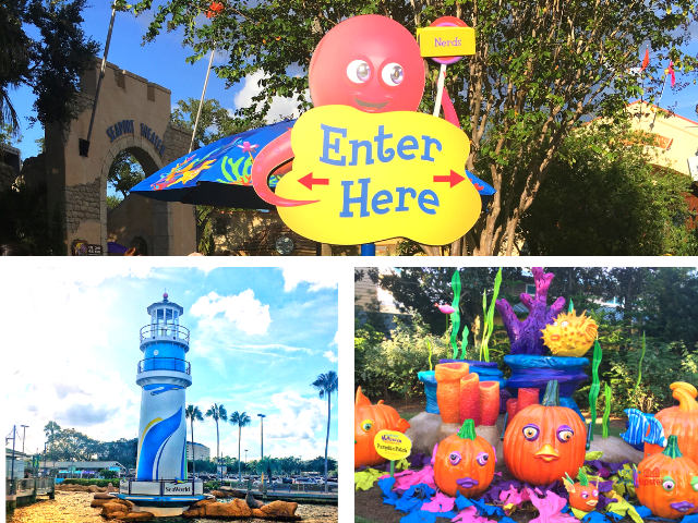 SeaWorld Spooktacular Halloween with colorful pumpkin patch