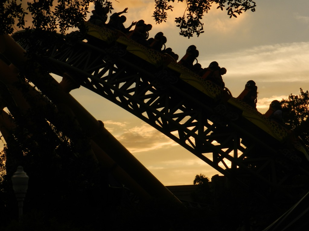 Busch Gardens Cheetah Hunt Roller Coaster at Night