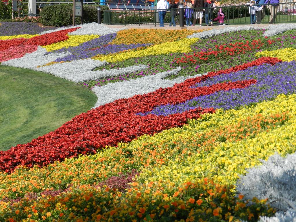 EPCOT Flower Garden Festival 2013 Garden area.