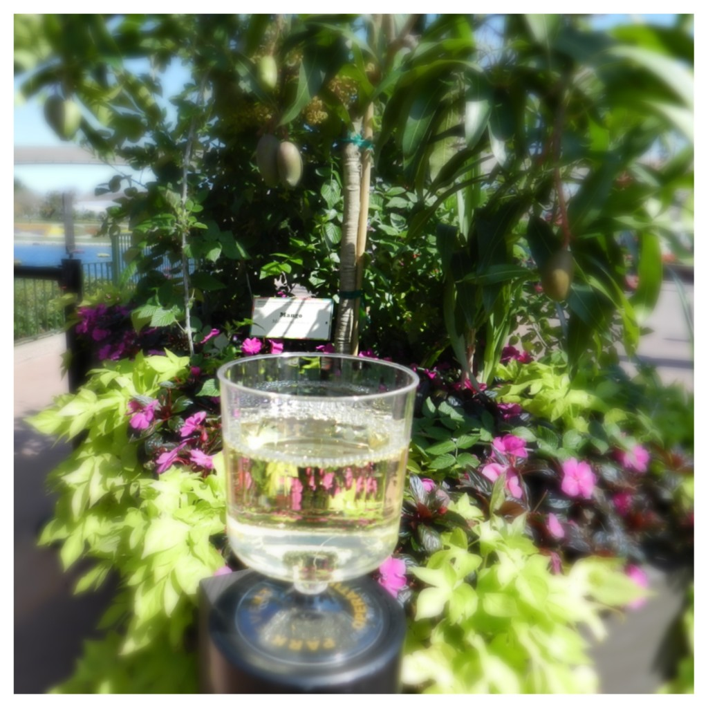 White Wine Pairings at Epcot