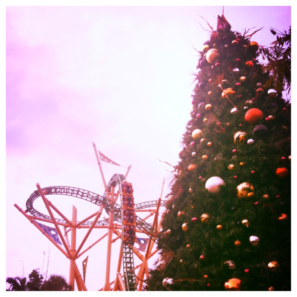 Christmastown at Busch Gardens with Cheetah Hunt Roller Coaster and Tall Christmas Tree