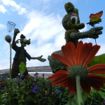 Epcot Flower and Garden Festival 2014 with Daisy Duck and Goofy Topiaries
