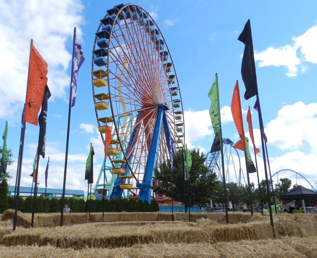 Alternative Entrances to Cedar: Access directly to Lake Eerie. Colorful Ferris Wheel.