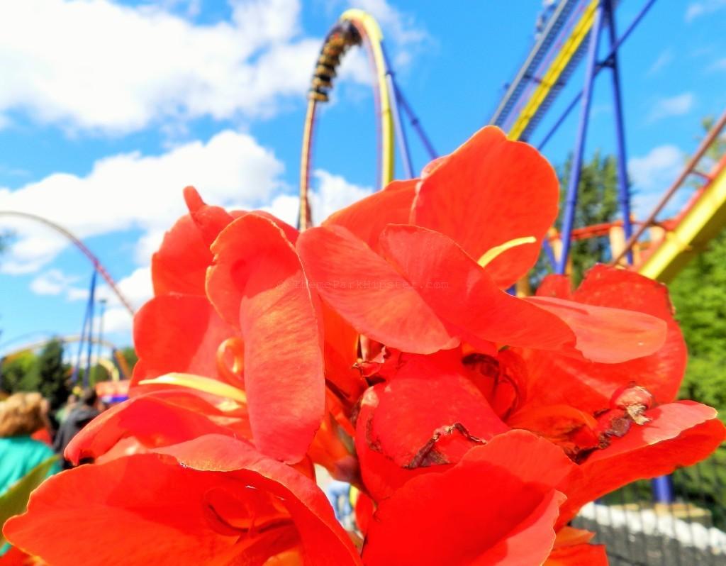 Mantis Cedar Point Roller Coaster