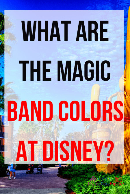 What are the Magic Band Colors at Disney World