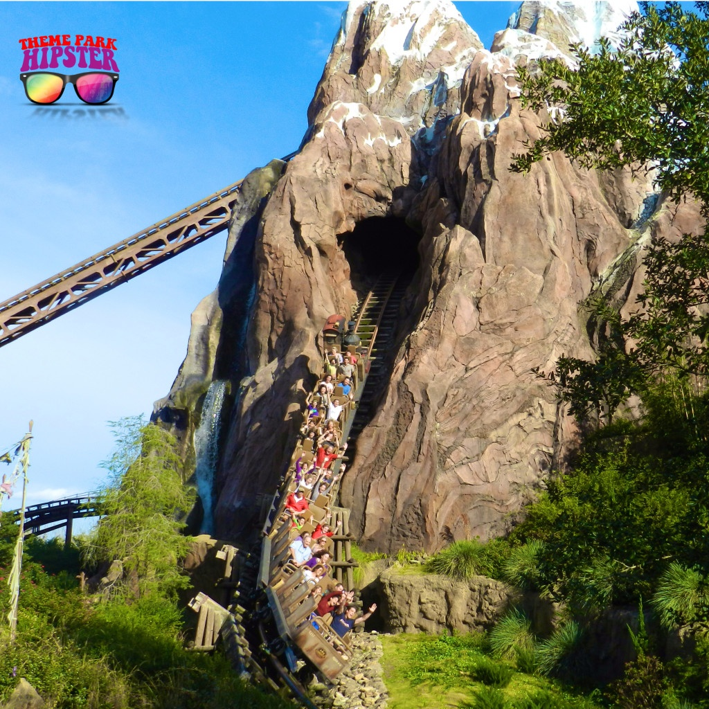 Expedition Everest at Disney's Animal Kingdom roller coaster.