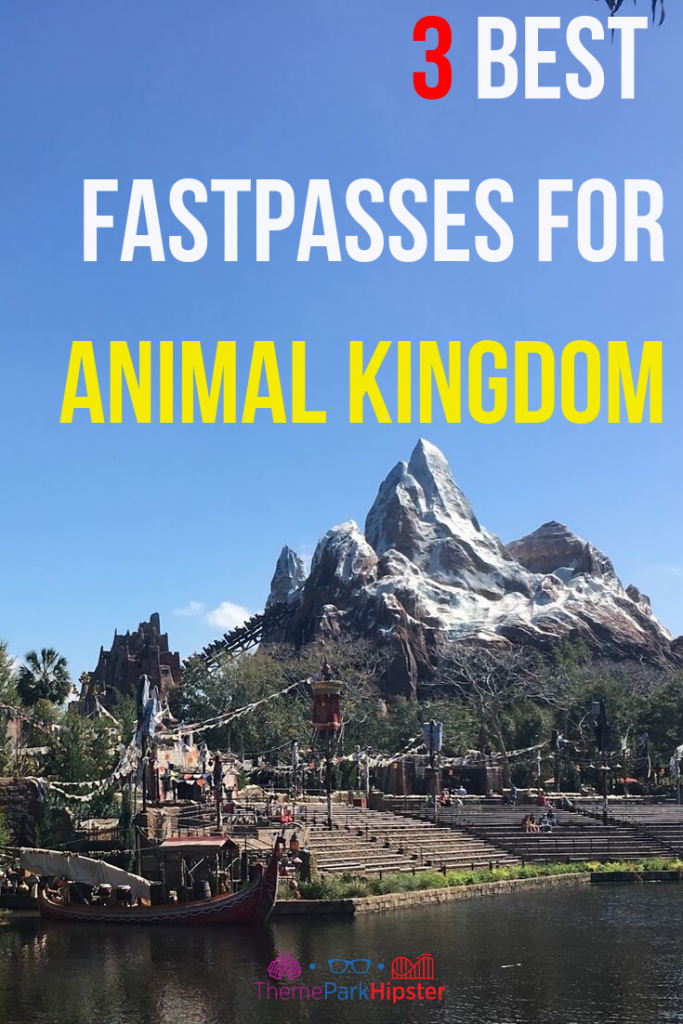 3 best fastpasses for animal kingdom