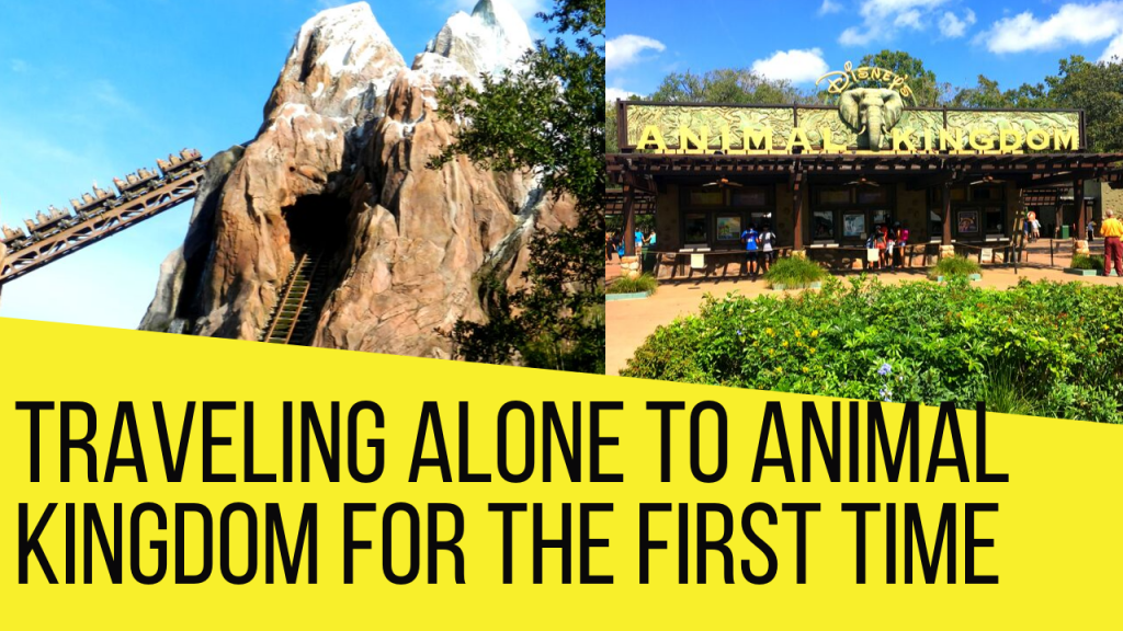 Animal Kingdom Solo Trip 2020