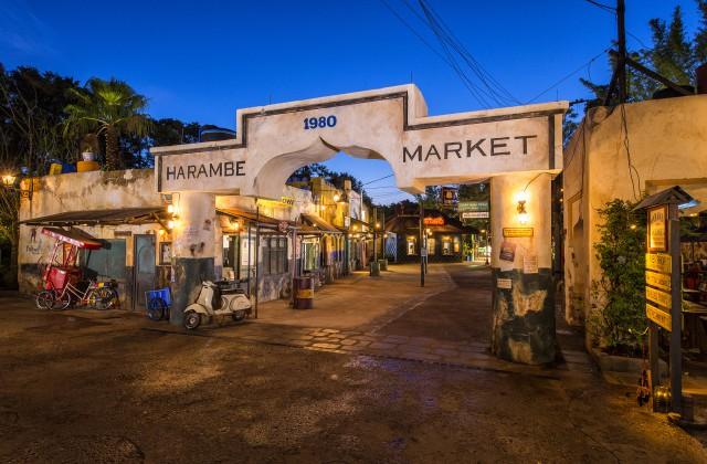 Harambe Market at Animal Kingdom