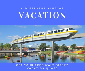 Walt Disney Vacation Package. save money for Disney.