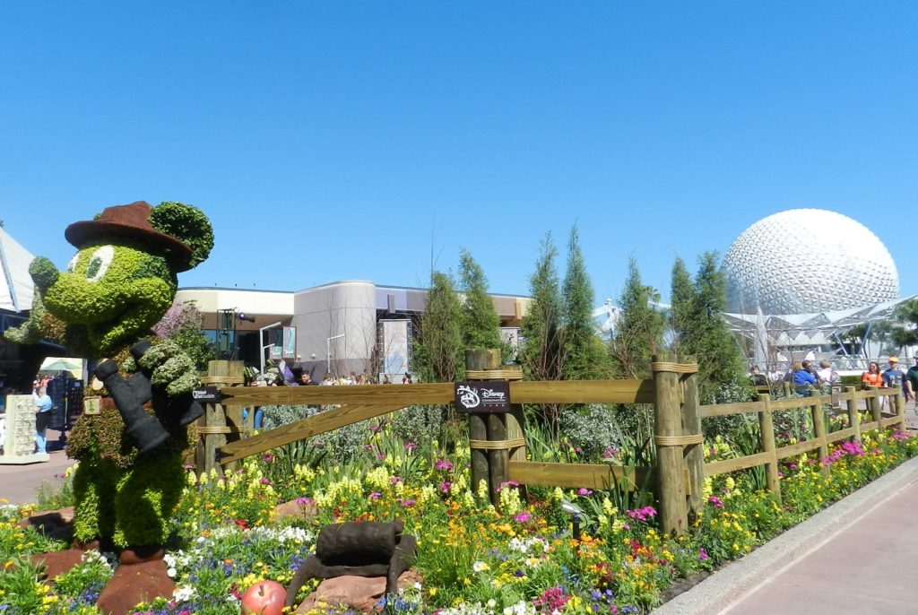 Disney Epcot International Flower and Garden Festival with topiary Mickey Mouse #epcot