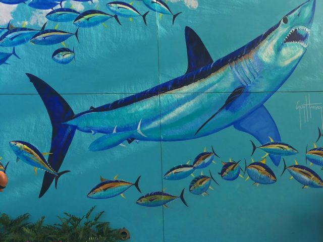 Mako SeaWorld Orlando Guy Harvey Mural