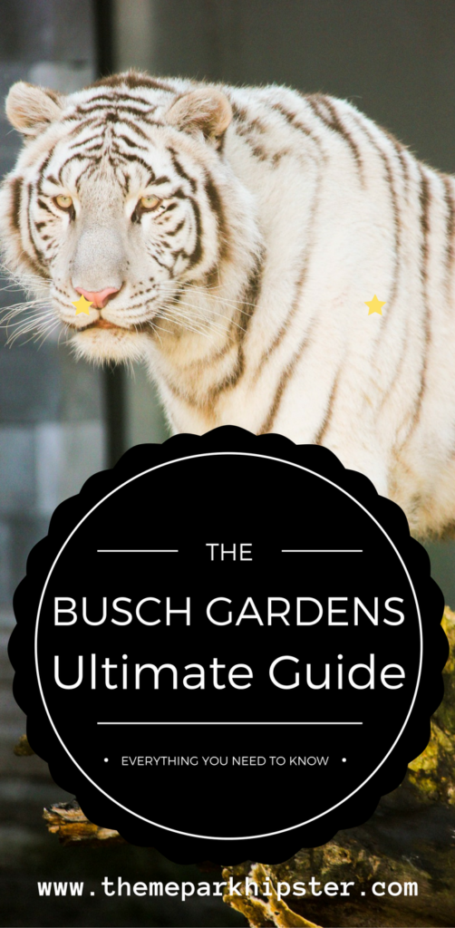 Busch Gardens Guide with white-black striped tiger.