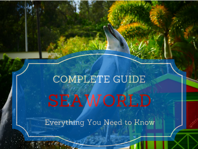 The best way to do SeaWorld Orlando