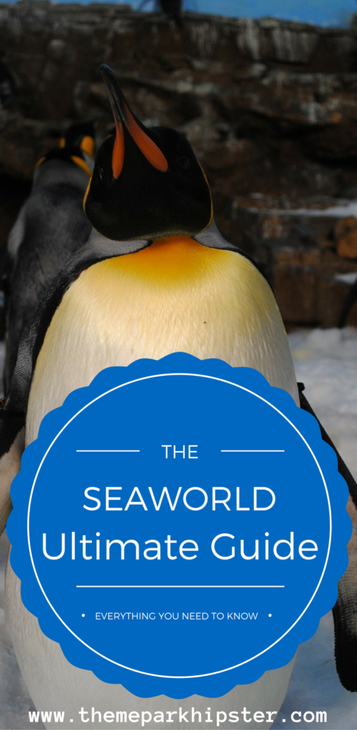 Plan the best trip to SeaWorld Orlando with this guide. Penguin habitat.