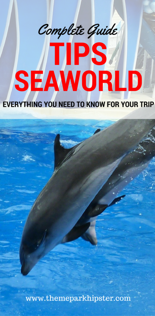 Top Tips for SeaWorld. Dolphins diving into blue water.