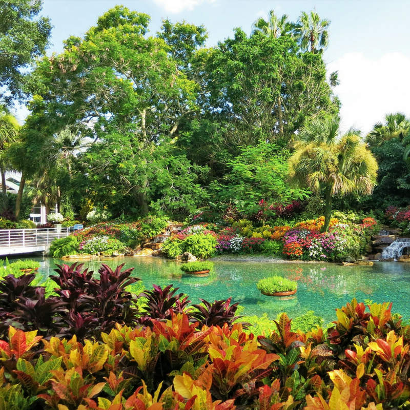 Seaworld Orlando Tips with Garden