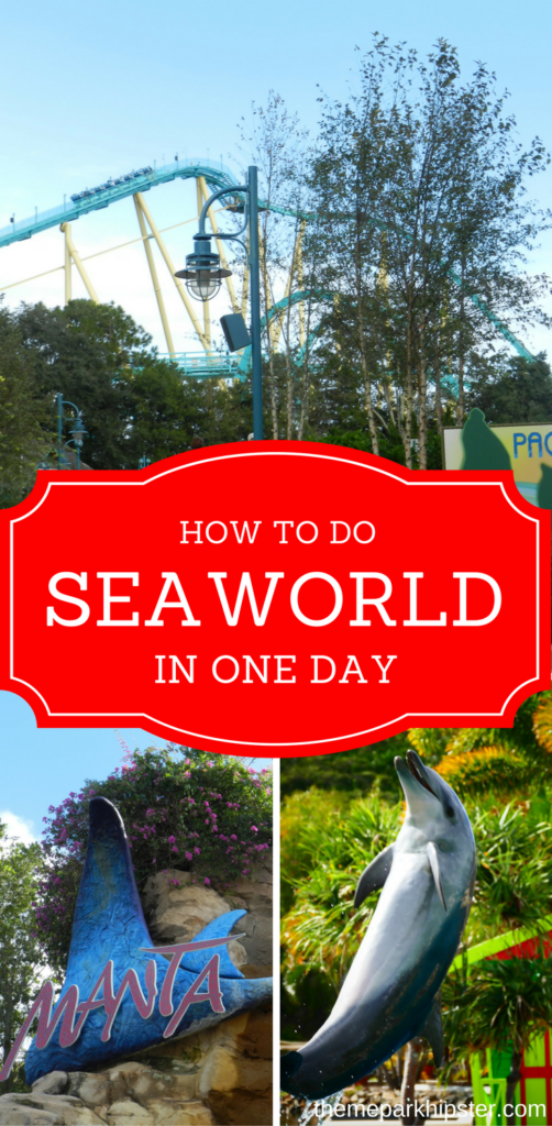 SeaWorld is a theme park that is great to do in one day while visiting Orlando with entrance to Manta Roller Coaster.