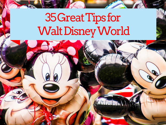 Disney World Tips You Should Know