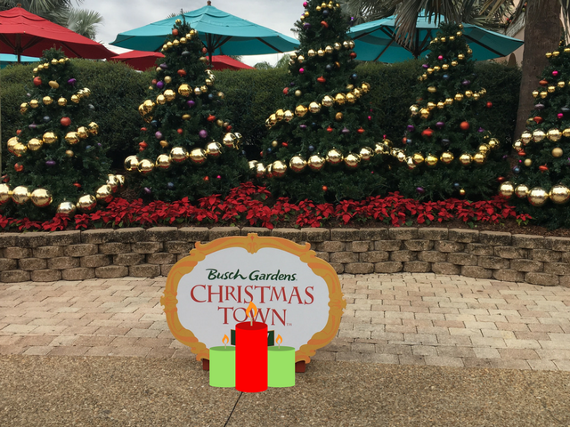 Christmas Town at Busch Gardens with Lush Trees and Gold, Red, and .Purple Bulbs