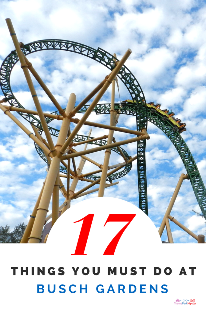 Busch Garden's Must Do's with green Cheetah Hunt Roller Coaster