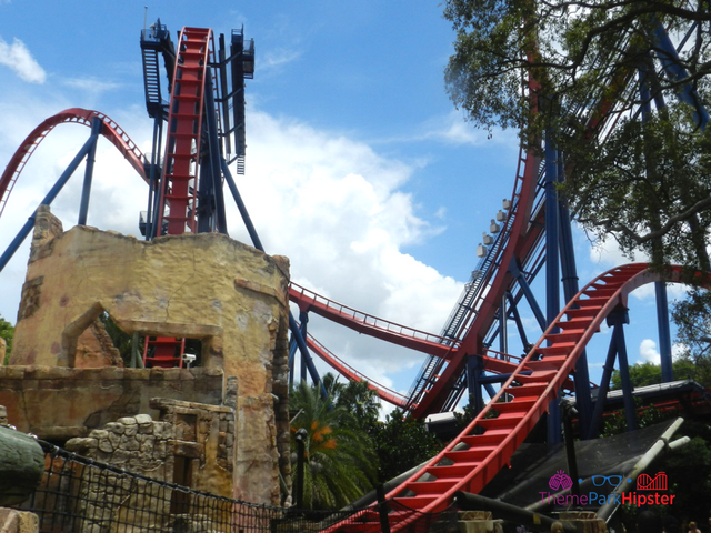 Sheikra Busch Gardens Must Do's