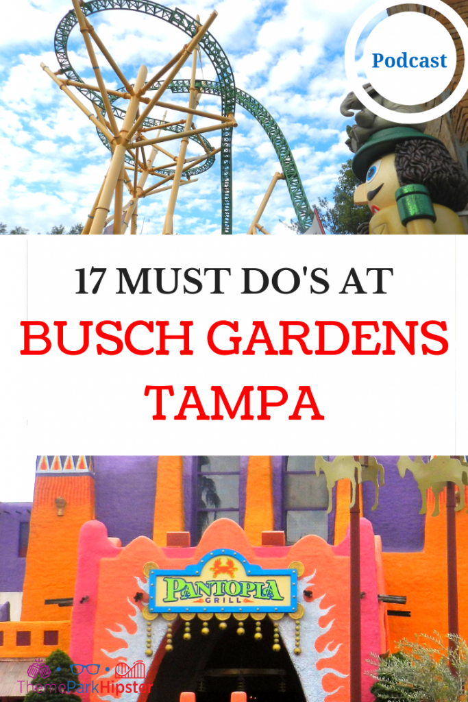 MUST DO AT BUSCH GARDENS TAMPA Yellow Cheetah Hunt Roller Coaster