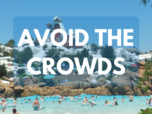 Avoid the crowds at walt disney world. Best time to go to Disney World.