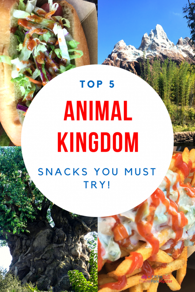 Best Animal Kingdom Snacks with mountain and fries in the background.