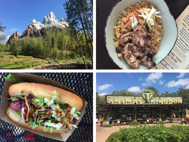 Top Five Animal Kingdom Snacks Disney World Hidden Secrets