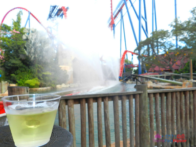 Sheikra Busch Gardens Red and Blue Roller Coaster with white wine.
