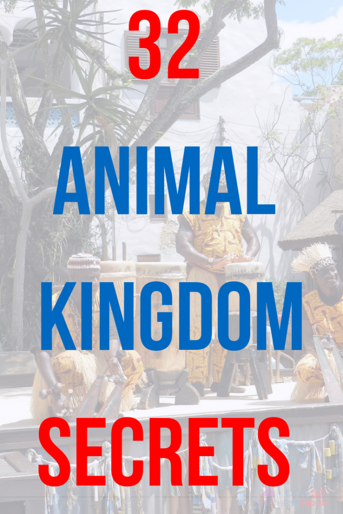 Animal Kingdom Secrets in Africa at Disney #disneysecrets #disneyplanning