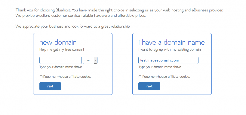 Bluehost domain name selection