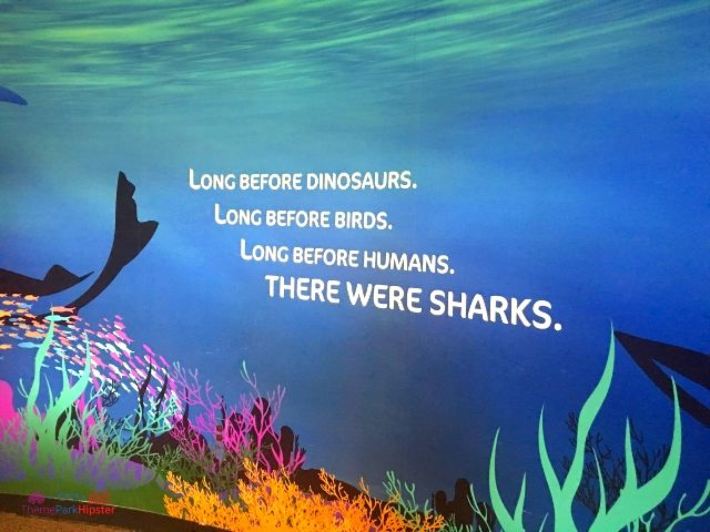 Shark Encounter SeaWorld Orlando with quote Long Before Humans, There Were Sharks.