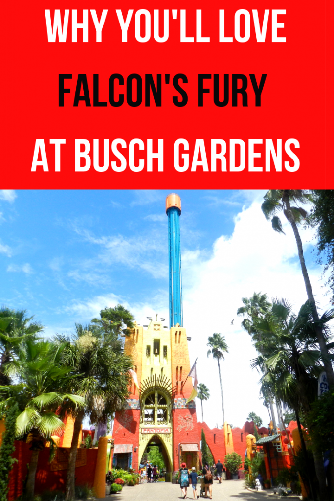 falcons fury at busch gardens