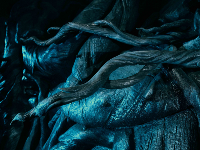Devils Snare Wizarding World of Harry Potter
