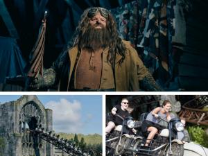 Hagrid motorbike roller coaster Universal Orlando Wizarding World of Harry Potter