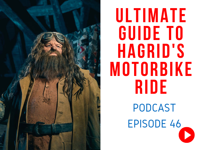 Hagrid's Magical Creatures Motorbike Adventure Review