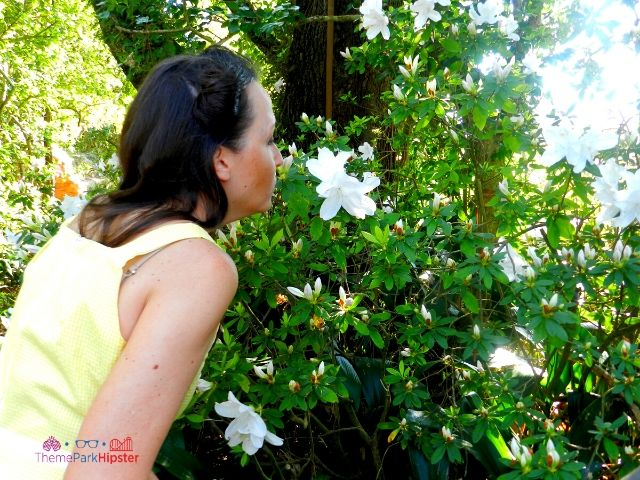 Dapper Day Disney World Magic Kingdom with woman smelling white flowers