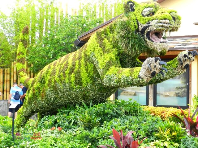 Busch Gardens Tampa Bay Tiger Topiary