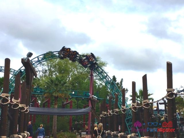Cobra's Curse in Busch Gardens Tampa Roll on Curve