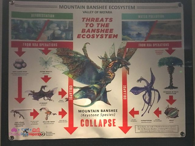 Flight of Passage Queue Banshee Ecosystem Chart at Disney Animal Kingdom