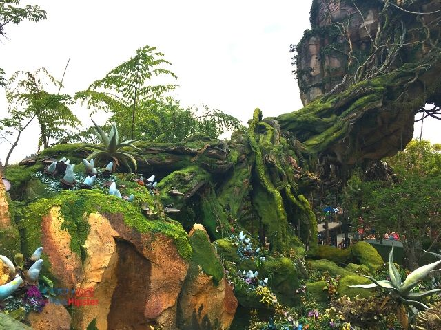 Flight of Passage Queue Outdoor Area at Disney Animal Kingdom