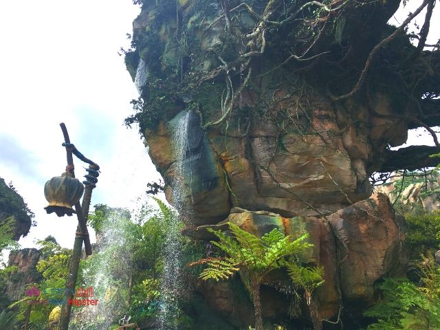 Flight of Passage Waterfalls in Outdoor Area at Disney Animal Kingdom