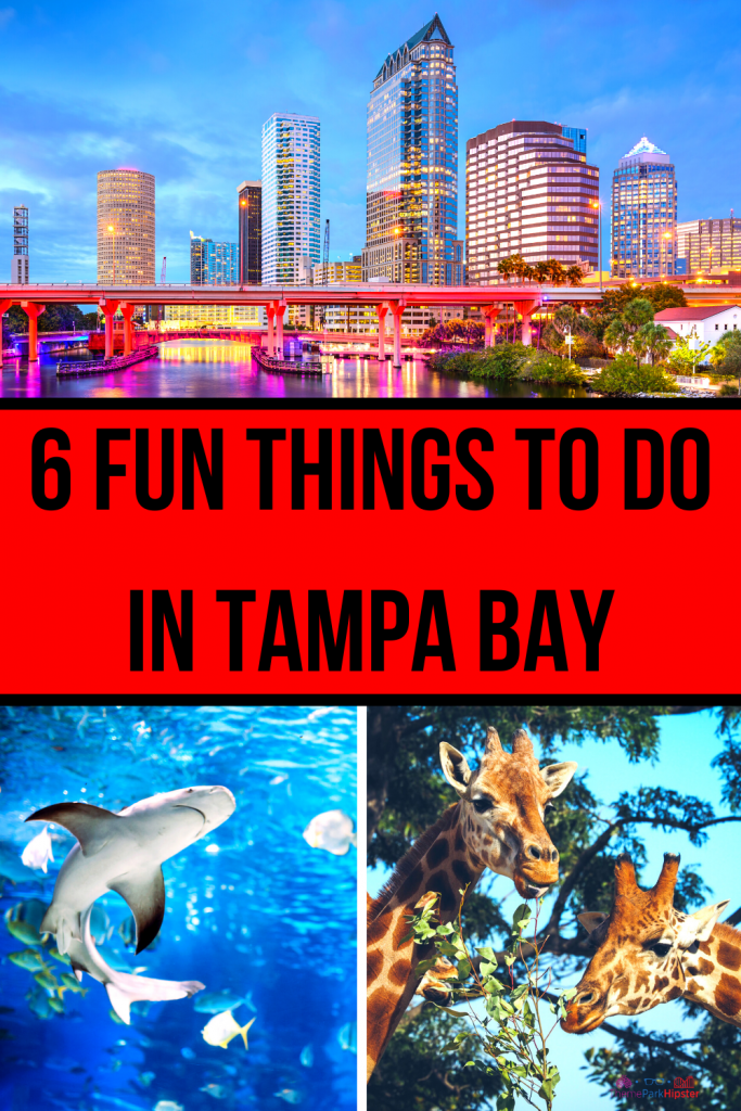 Fun things to do in Tampa with CityPass
