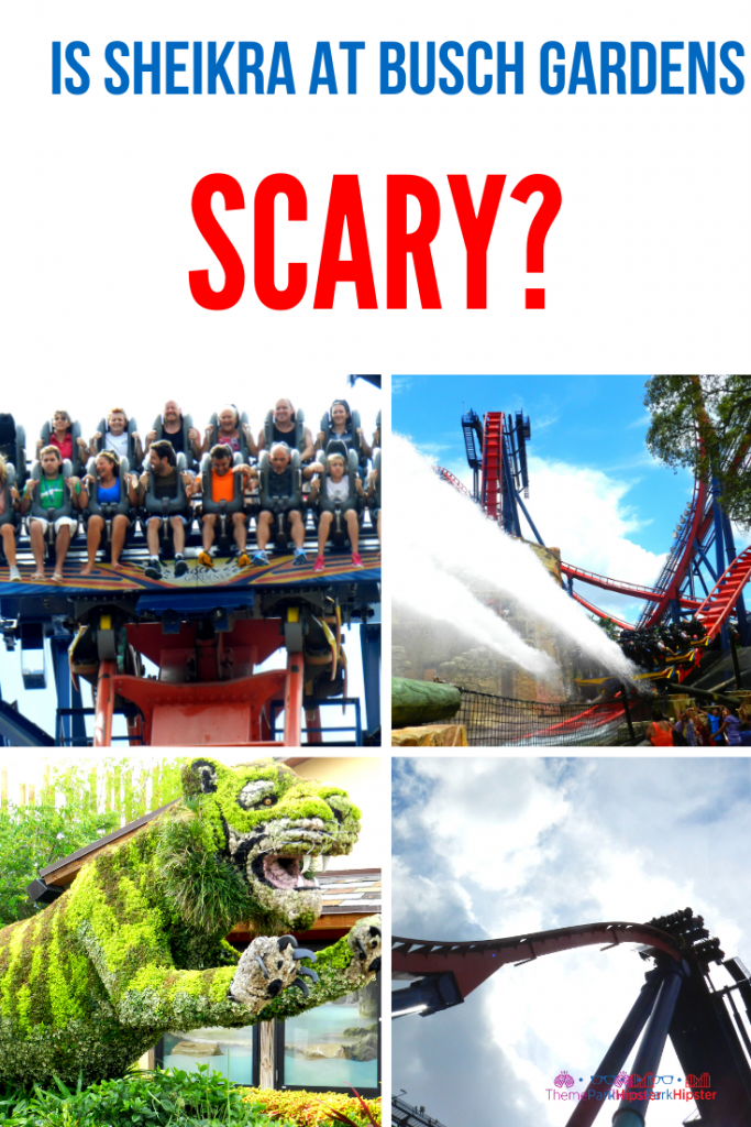 Is Sheikra at Busch Gardens Scary