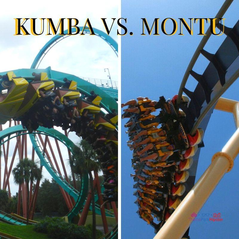 KUMBA VS. MONTU AT BUSCH GARDENS