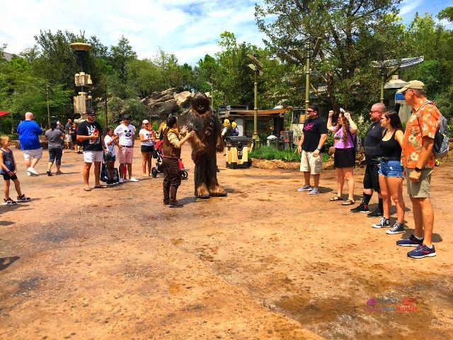 Chewbacca Interacting with Guests at Hollywood Studios in Disney World.